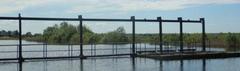 Проведено послепаводковое обследование польдерных систем в Ленинградской области.