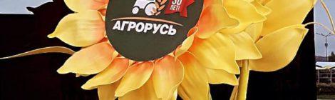 День Ленинградской области